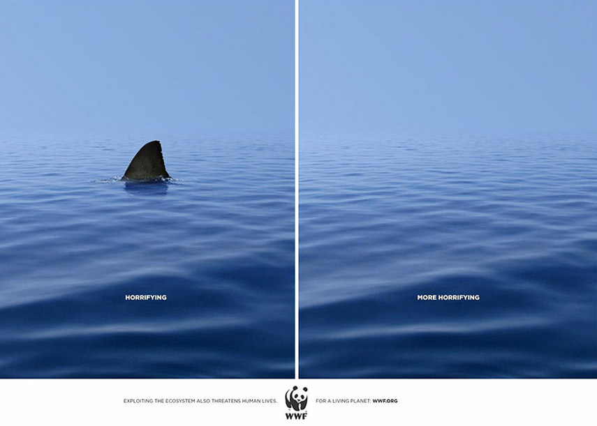 publicidad-medioambiental-tiburon