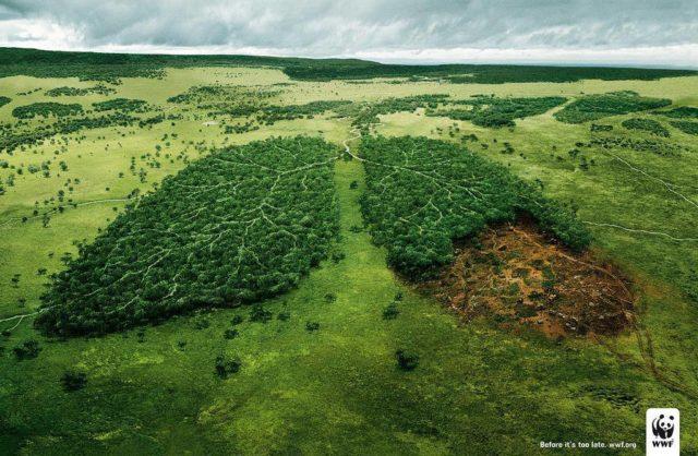 Publicidad_Medioambiental_WWF